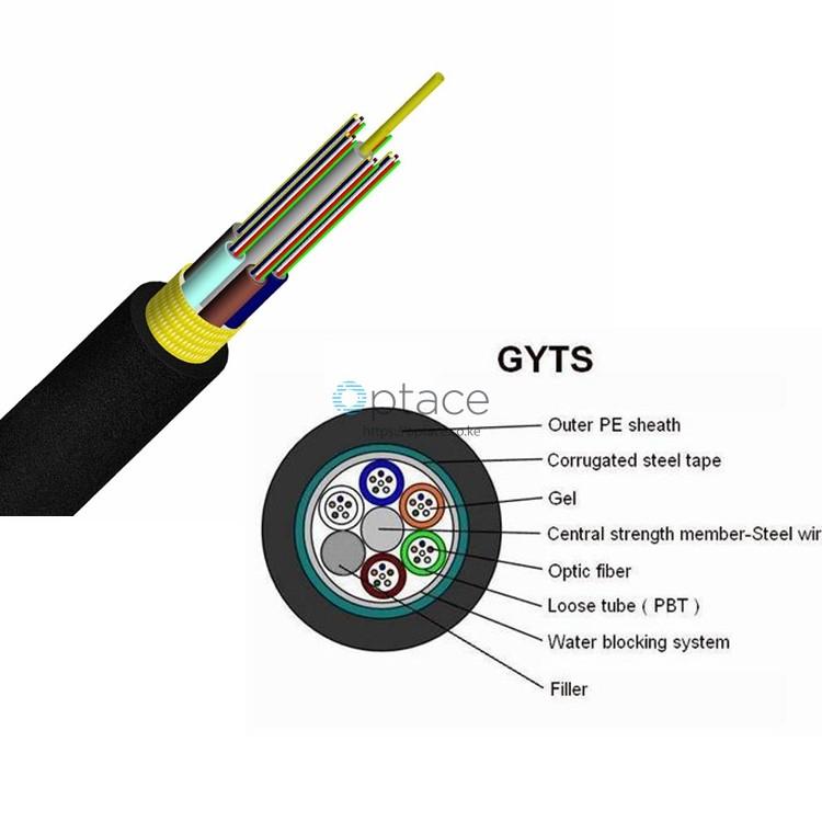 48-core, Singlemode, OS2, (GYTS)